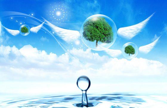 1242/Nâng cao nhận thức sử dụng và bảo vệ nguồn nước