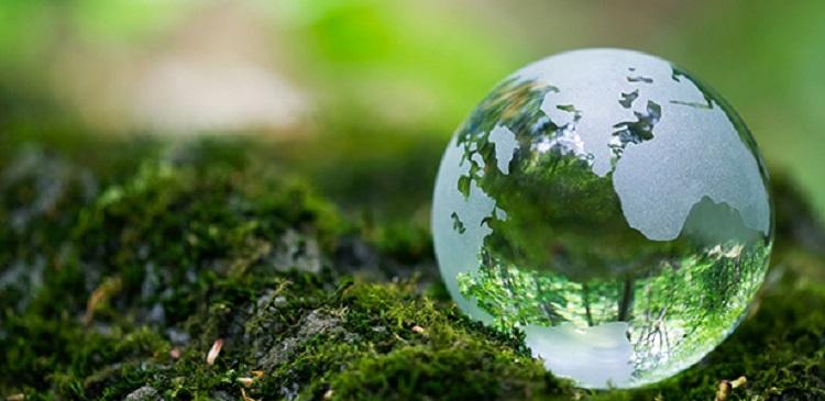Tìm hiểu thị trường sản phẩm xanh Đài Loan