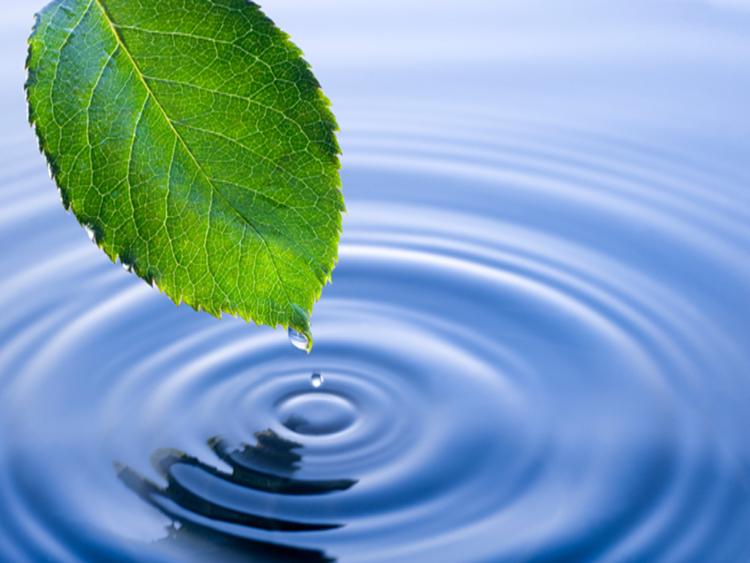 876/Nhân sự Hội đồng quốc gia về tài nguyên nước