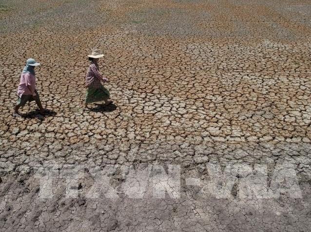 1999/Thái Lan sẽ xây nhà máy khử mặn nước biển đối phó với hạn hán