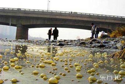771/10 dòng sông lớn trên thế giới đang bị ô nhiễm
