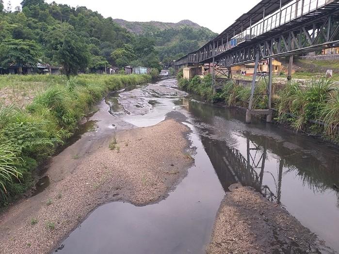 2087/Cứu sông, vịnh Hạ Long khi chưa quá muộn