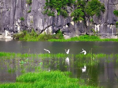 1126/7 vai trò của đất ngập nước đối với con người và thiên nhiên