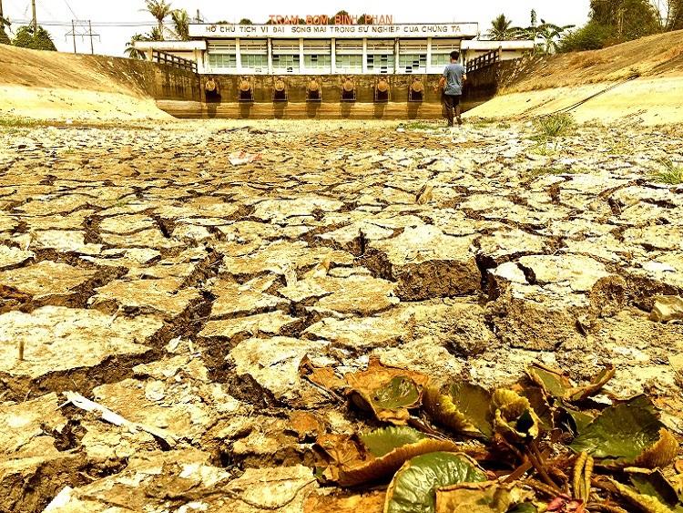 1874/Đồng bằng sông Cửu Long: Bao giờ hạn mặn đi qua?