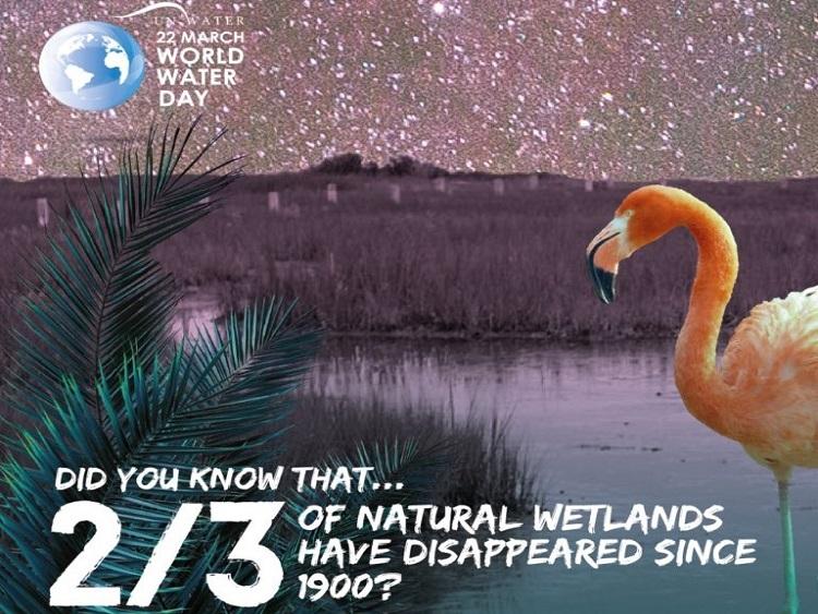 1113/Ngày Nước thế giới 2018: Khai thác tiềm năng của tự nhiên để quản lý và bảo vệ tài nguyên nước hiệu quả