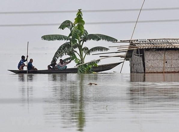 2099/Gần 4 triệu người tại Ấn Độ và Nepal phải sơ tán khẩn cấp do lũ lụt