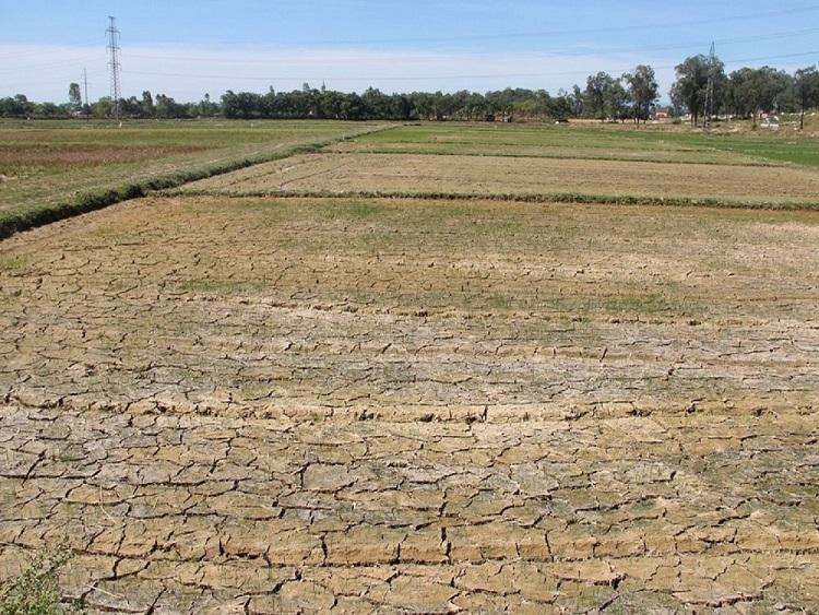 """Bắc Trung Bộ """"thấp thỏm"""" lo thiếu nước"""